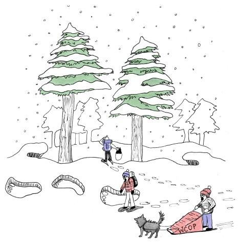 OP winter offerings