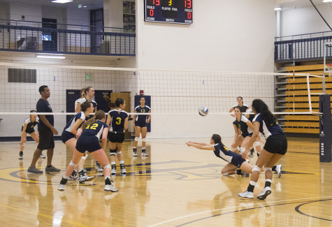 Homestand vital for struggling volleyball team
