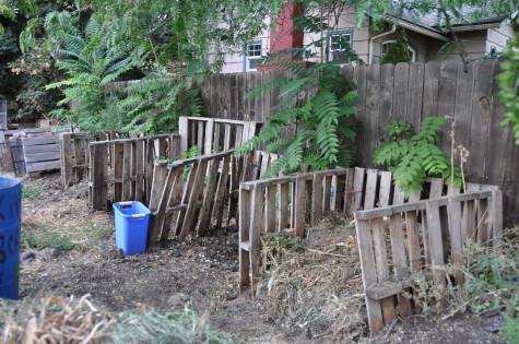 New Composting Program Faces Challenges