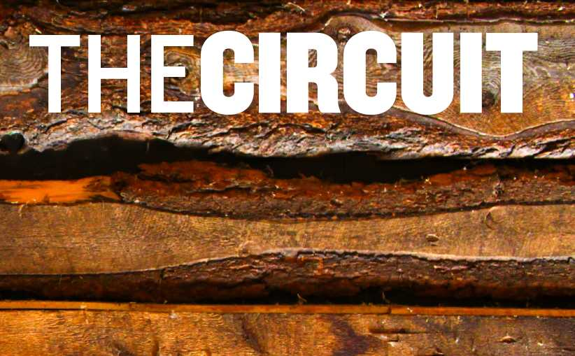 The Circuit, Issue 2