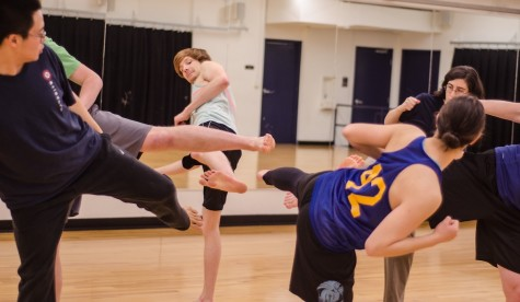 New Martial Arts Club Promotes Fitness, Self-Defense