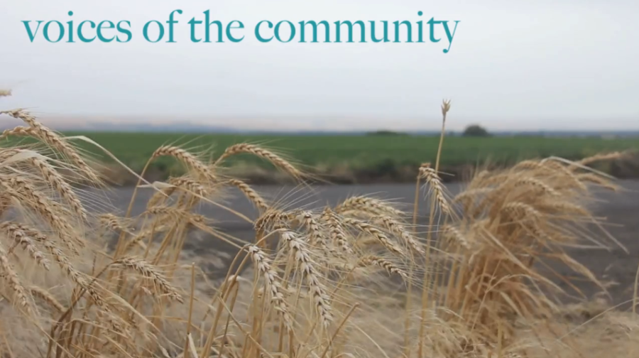 Issue 4: Voices of the Community