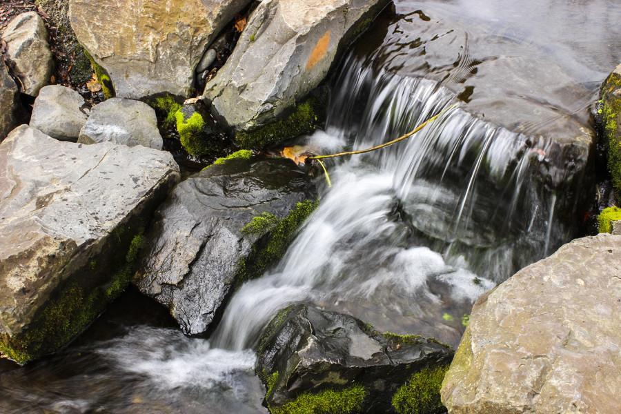 Hypnotic Hydrology