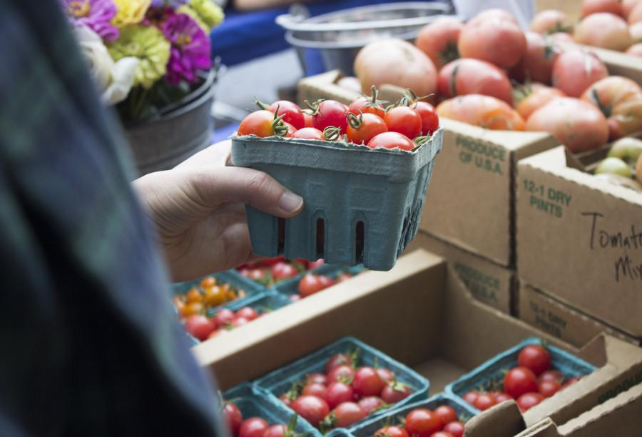 Glean Team and Organic Garden help fight hunger in community