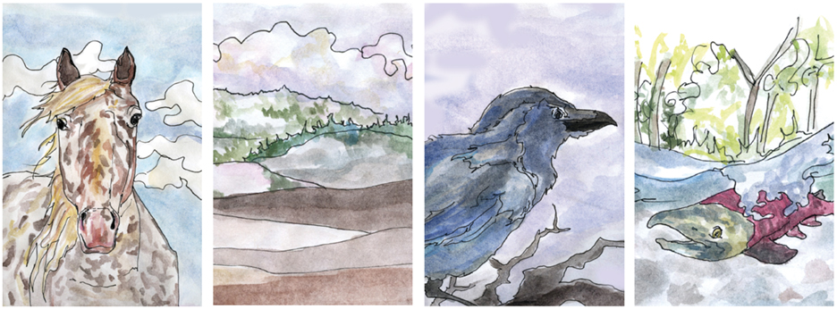 Illustrations by Claire Revere.