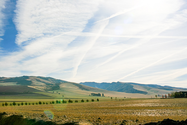 The Blue Mountains east of Walla Walla. Photo by Marra Clay