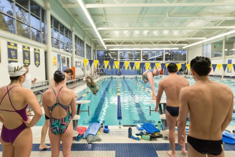 Dive in: Whitman Swimming off to the Races