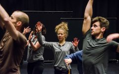 Annual Dance Series Features Guest Artists