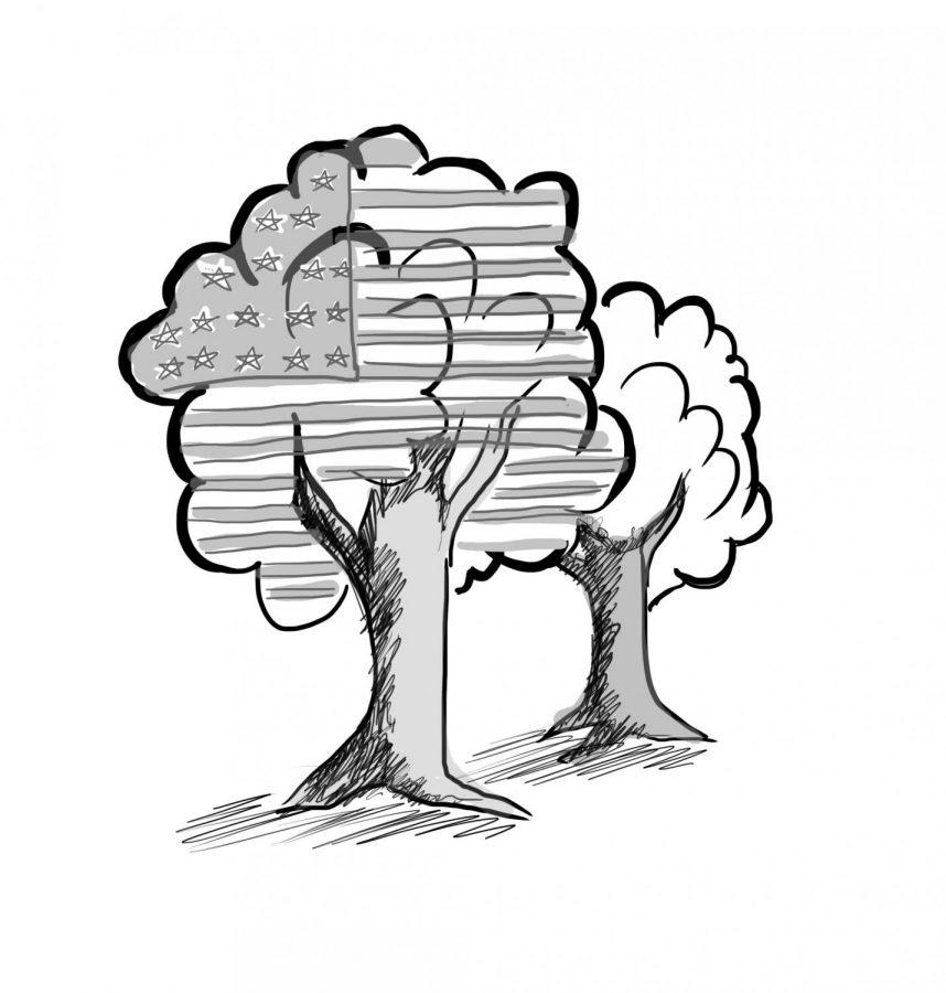Illustration by Elena Kaminskaia