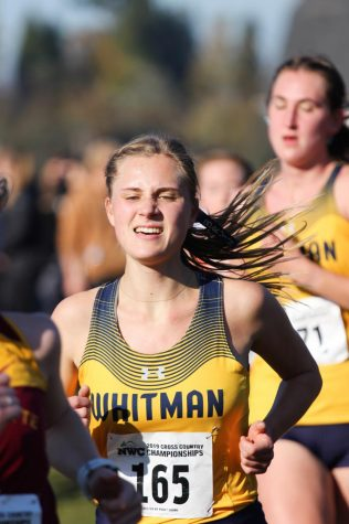 Women's cross country takes first in NWC conference