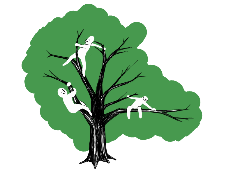 The mythic tale of the Whitman tree climber: A true history