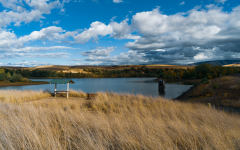 Bennington Lake closed following discovery of dangerous bacterial bloom